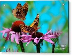Bff Best Friend Flutterbyes Acrylic Print by Lois Bryan