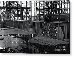 Acrylic Print featuring the photograph Bicycle Alone by Maja Sokolowska