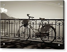 Bicycle Basket Fence Acrylic Print by Colleen Williams