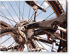 Acrylic Print featuring the photograph Bicycle Gears by Trever Miller