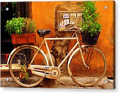 Acrylic Print featuring the photograph Bicycle In Rome by Caroline Stella