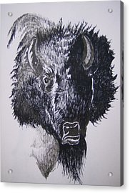 Acrylic Print featuring the drawing Big Bad Buffalo by Leslie Manley