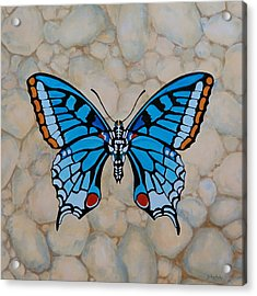 Big Blue Butterfly Acrylic Print by Jo Appleby