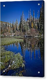 Big Cottonwood Canyon  Acrylic Print by Richard Cheski