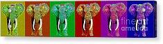 Big Elephant Six 20130201 Acrylic Print by Wingsdomain Art and Photography