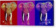 Big Elephant Three 20130201v2 Acrylic Print by Wingsdomain Art and Photography