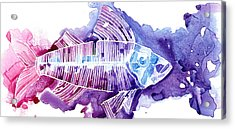 Big Fish Acrylic Print by Mike Lawrence