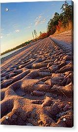 Big Green Tracks Acrylic Print