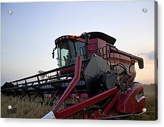 Big Harvest Acrylic Print