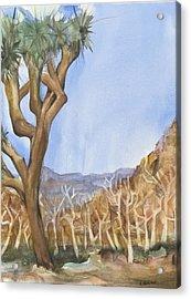 Big Joshua Tree Acrylic Print by Lynne Bolwell