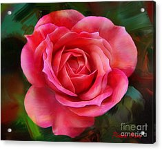 Big Miniature Rose Acrylic Print