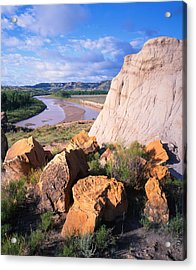 Big Mo In Tr Acrylic Print by Ray Mathis