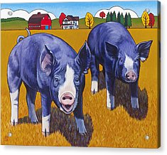 Big Pigs Acrylic Print by Stacey Neumiller