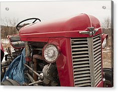 Big Red  Acrylic Print by Eugene Bergeron