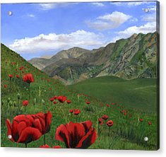 Big Red Mountain Poppies Acrylic Print by Cecilia Brendel