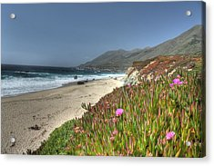 Big Sur Beach Acrylic Print by Jane Linders