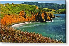 Big Sur California Coastline Acrylic Print by Bob and Nadine Johnston