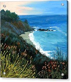 Big Sur Coastline Acrylic Print by Alice Leggett
