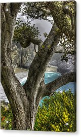 Big Sur Mc Way Falls At Julia Pfeiffer State Park-1 Central California Coast Spring Early Afternoon Acrylic Print