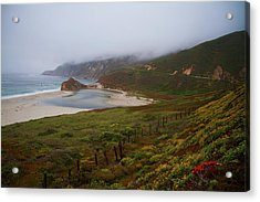Acrylic Print featuring the photograph Big Sur by Tom Kelly