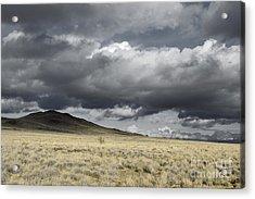 Big Volcano Field Acrylic Print by Andrea Hazel Ihlefeld
