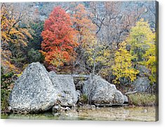 Bigtooth Maple And Rocks Fall Foliage Lost Maples Texas Hill Country Acrylic Print by Silvio Ligutti