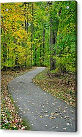 Bike Path Acrylic Print by Frozen in Time Fine Art Photography
