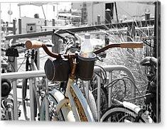 Biking With Panama Jack  Acrylic Print by Steven Digman