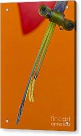 Bilbergia  Windii Detail Acrylic Print by Heiko Koehrer-Wagner