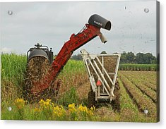 Billet Sugarcane Harvester Acrylic Print