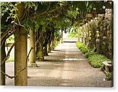 Acrylic Print featuring the photograph Biltmore Pergola by Tammy Schneider