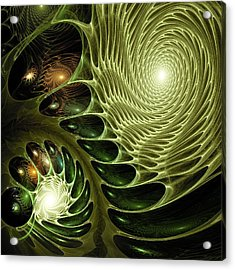 Bio Acrylic Print by Anastasiya Malakhova