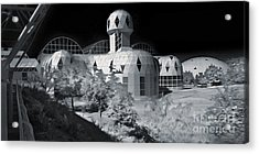 Biosphere2 - Black And White Acrylic Print by Gregory Dyer