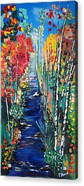 Birch Trees Along River Bank Acrylic Print