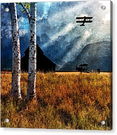 Birch Trees And Biplanes  Acrylic Print