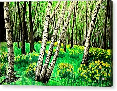 Birch Trees In Spring Acrylic Print
