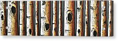 Birches A Touch Of Red Acrylic Print by Lori McPhee