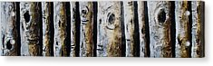 Birches Standing Before You Acrylic Print by Lori McPhee