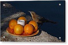 Bird Banquet Acrylic Print