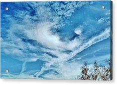 Bird Cloud Soaring By Acrylic Print by Angela J Wright