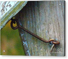 Bird Feeder Locked Memory Acrylic Print