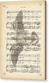 Bird Music Acrylic Print by Georgia Fowler