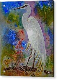 Bird Of Beauty Acrylic Print