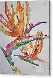Acrylic Print featuring the painting Bird Of Paradise #2 by Roger Parent
