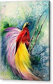 Bird Of Paradise New-guinea Acrylic Print