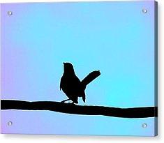 Bird On A Wire Acrylic Print by Jessica Stiles