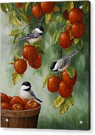 Bird Painting - Apple Harvest Chickadees Acrylic Print by Crista Forest