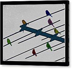 Bird Reception Acrylic Print