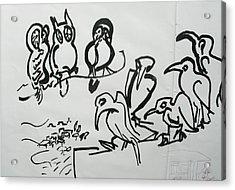 Bird Talk Acrylic Print by Godfrey McDonnell