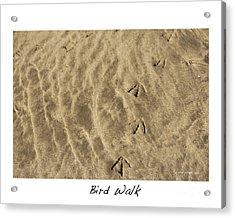 Bird Walk Acrylic Print by Artist and Photographer Laura Wrede